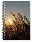 The Wonder Of The Setting Sun Spiral Notebook