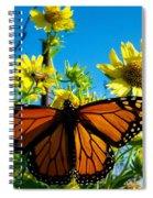 The Wonderful Monarch 3 Spiral Notebook