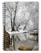 The Wonders Of Winter  Spiral Notebook