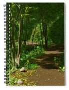 The Wooded Path... Spiral Notebook