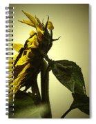 The Yellow Glow Spiral Notebook