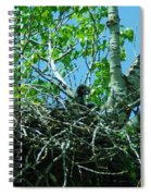 The Young Eaglet Peaks Out  Spiral Notebook