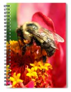 The Zinnia And The Bee Spiral Notebook