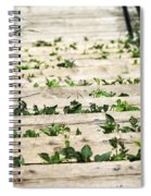 There Is No Stopping Nature Spiral Notebook