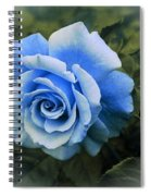 There Were Roses Triptych 2 Spiral Notebook