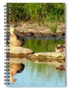 These Ducks Rock Spiral Notebook