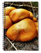 These Look Almost Animal  Spiral Notebook