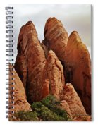 Thick Fins Spiral Notebook