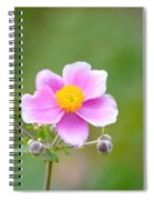 Thing Of Beauty Spiral Notebook