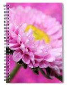Think In Pink Spiral Notebook