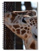 Thinking Africa Spiral Notebook