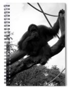 Thinking Of You Black And White Spiral Notebook