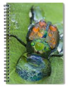 Thirsty Beetle Spiral Notebook