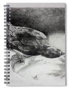 Thirsty Crow Spiral Notebook