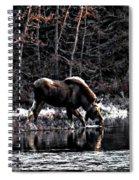Thirsty Moose Impressionistic Digital Painting Spiral Notebook