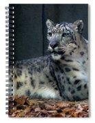 This Is My Corner Spiral Notebook