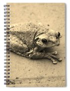 This Old Frog Spiral Notebook