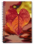 This One Is For Love Spiral Notebook