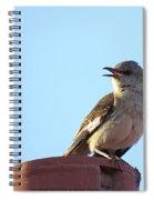This Spring's Mockingbird Spiral Notebook
