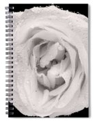 This White Rose Spiral Notebook