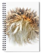 Thistle Abstract 14-1 Spiral Notebook
