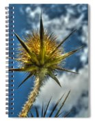 Thistle And Sky Spiral Notebook