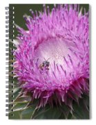 Thistle And The Bee Spiral Notebook
