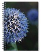 Thistle Bloom 2 Spiral Notebook