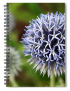 Thistle Bloom Spiral Notebook