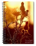 Thistle Edge Glow Spiral Notebook