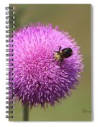 Thistle And A Bee Spiral Notebook