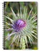 Thistle Flower Spiral Notebook