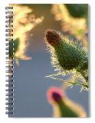Thistle Garden Spiral Notebook