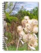 Thistle Me This Spiral Notebook