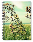 Thistle On The Beach  Spiral Notebook