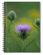 Thorn Buds Spiral Notebook