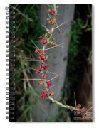 Thorns And Blooms Spiral Notebook