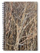Thorny Wall Spiral Notebook