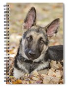 Those Ears Spiral Notebook