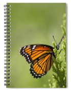 Those Magnificent Monarchs - Danaus Plexippus Spiral Notebook