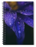 Those Tears You Cry Spiral Notebook