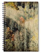 Those West Virginia Hills Spiral Notebook
