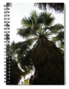 Thousand Palms Canyon Spiral Notebook