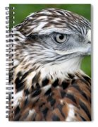 The Threat Of A Predator Hawk Spiral Notebook