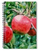 Three Apples On Tree Spiral Notebook