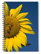 Three Bees And A Sunflower Spiral Notebook