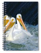 Three Buddies Hanging Out Spiral Notebook