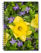 Three Daffodils In Blooming Periwinkle Spiral Notebook
