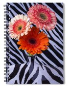 Three Daises In Striped Vase Spiral Notebook