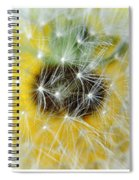 Three Dandelions In A Line Spiral Notebook